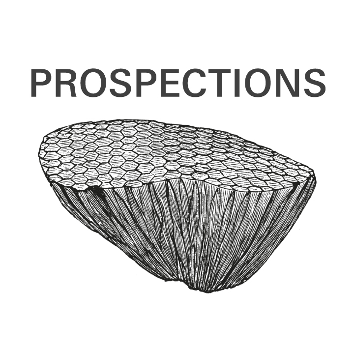PROSPECTIONS for Art, Education and Knowledge Production